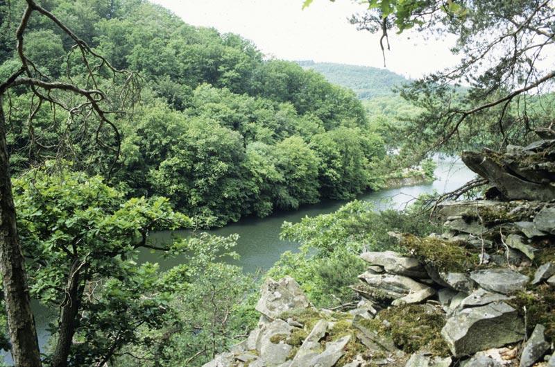 Foto: Felshänge im Nationalpark Kellerwald-Edersee