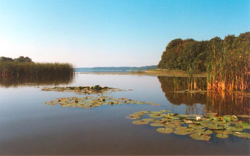 Foto: Müritz-Nationalpark