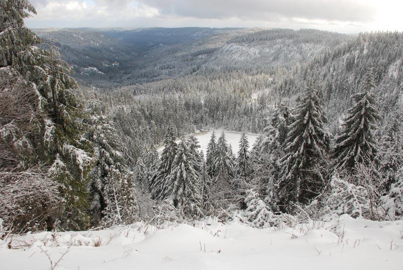 Foto: Nationalpark Schwarzwald