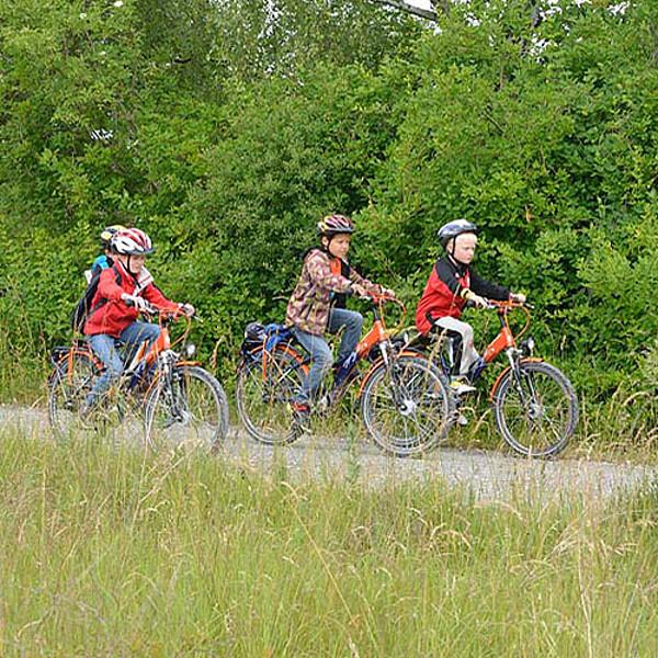 Foto: Radwege im Nationalpark Hainich
